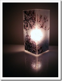 Cherry Blossom Polaroid Photo Lamp by Jersey Maid on ArtFire