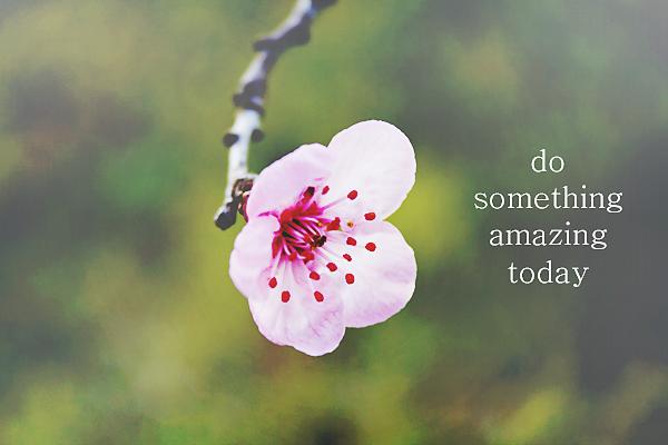 do-something-amazing-today copy