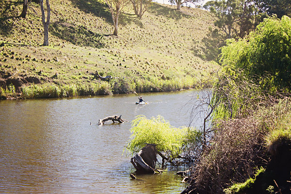 Kayaking in the McDonald River