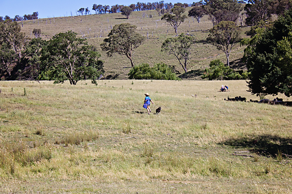 Kids running across the paddock to the river