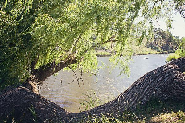 The McDonald River at Marinka