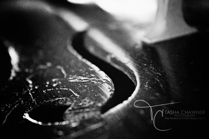 Depth of Field - Cello