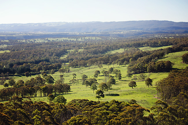 view of the yarrowitch valley