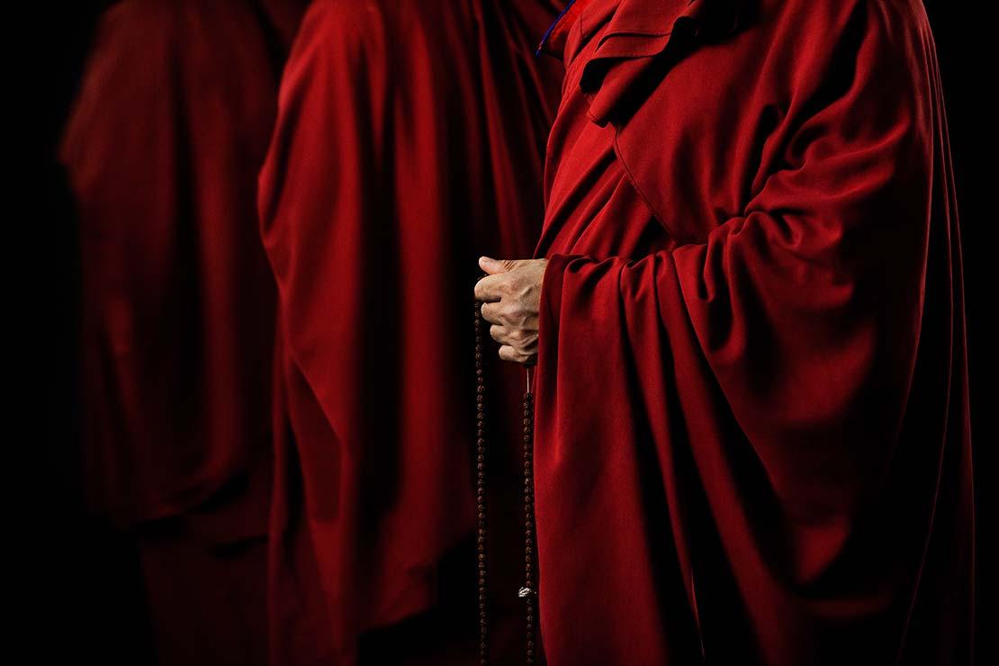 BuddhasRobes_211
